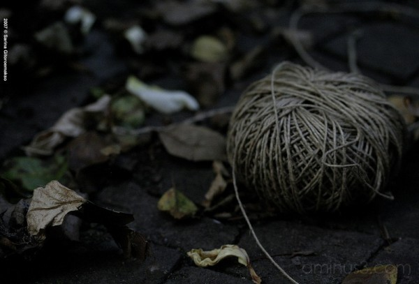 Ball of yarn or twine