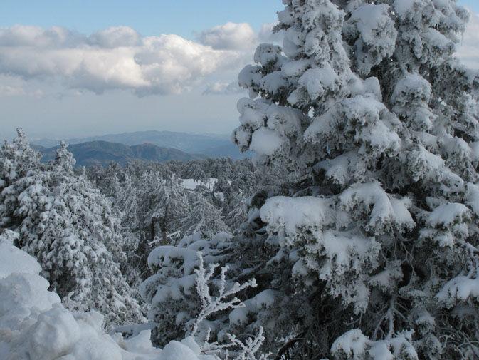 Last Christmas in Cyprus