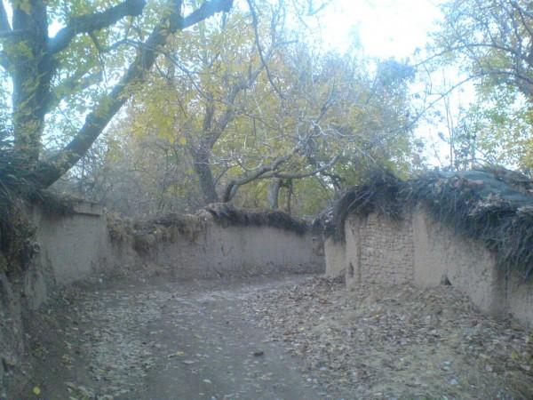 پاییز 2
