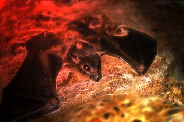 créature de la nuit
