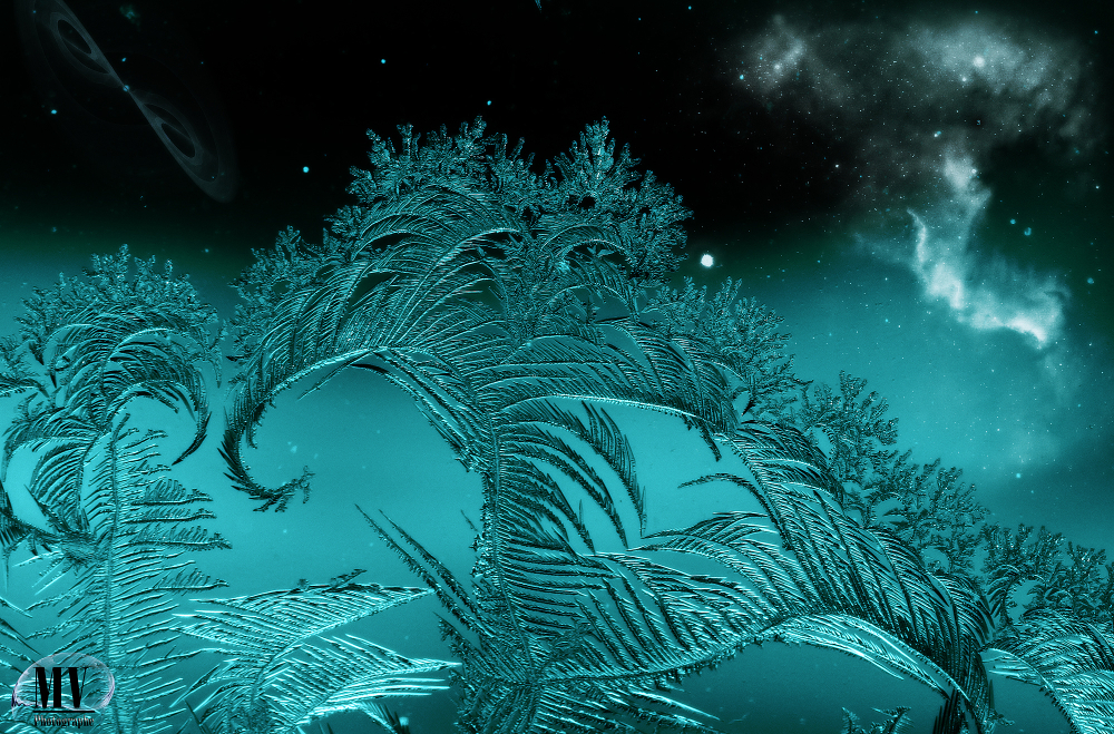 Givre stellaire