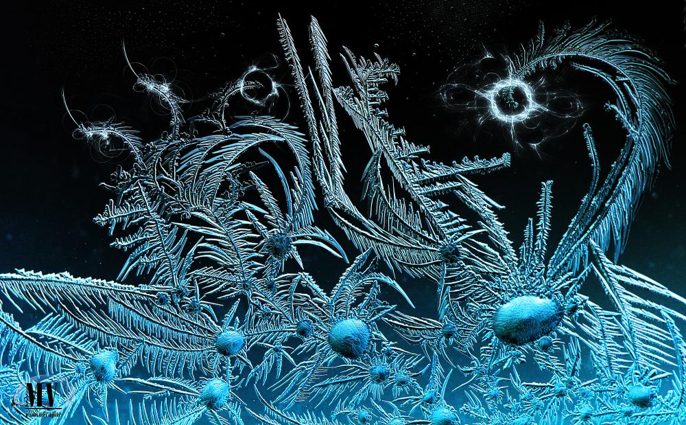 Jardin de cristaux