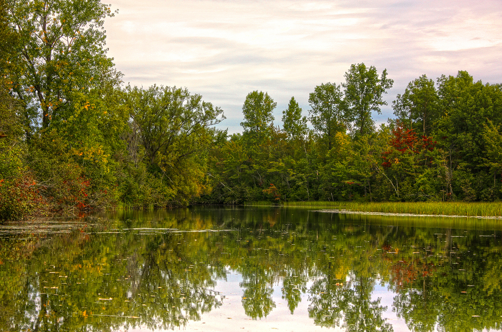 l'automne approche