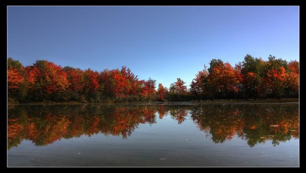 Paysage d'automne II