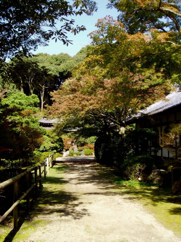 Path at Daigoji