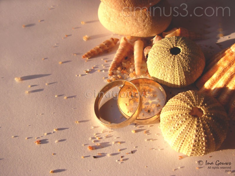 Closeup of wedding ring with shells and seasand