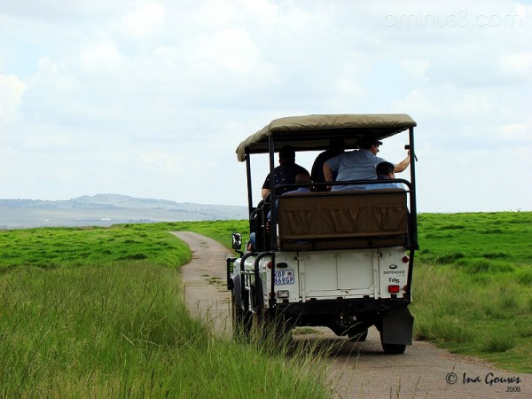 On safari, South Africa