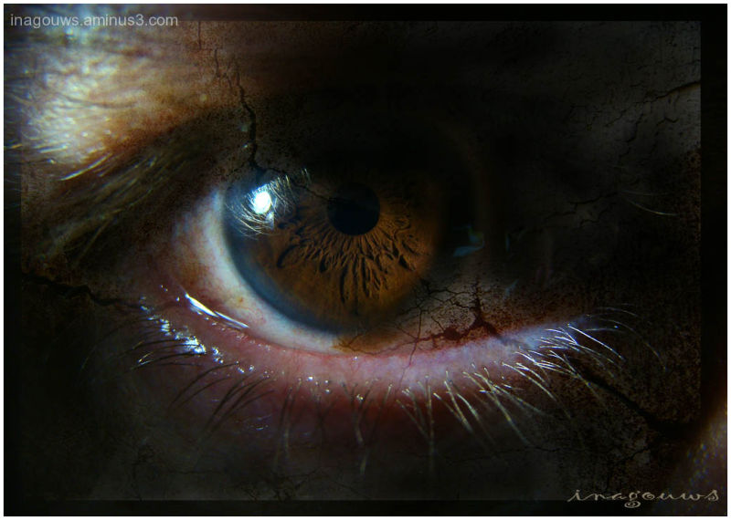 Closeup of brown eye