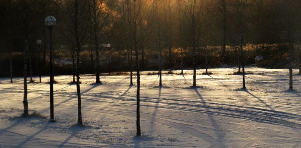 Parkinglot at dawn