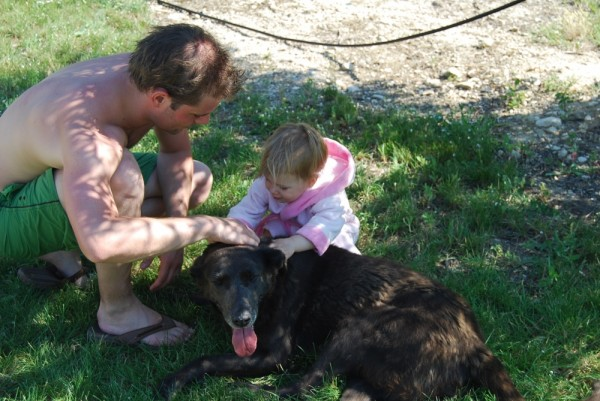 Im Urlaub mit Hund Bernard