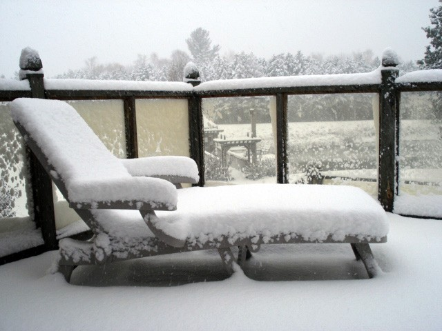 my first winter sight