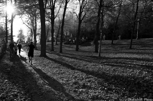 Shadows #2