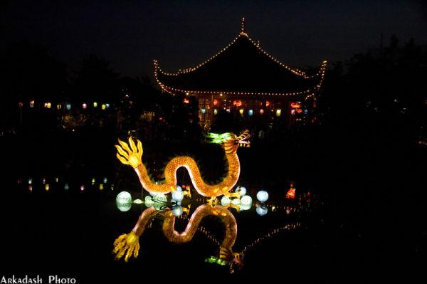 Chinese Lanterns #7