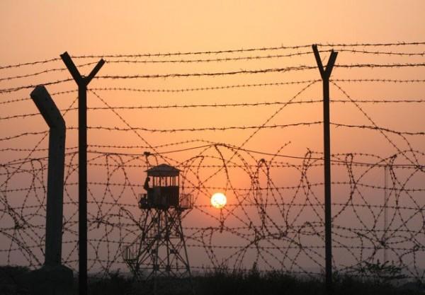 sentry in sunset