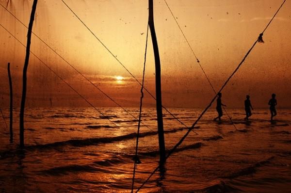 net & sunset