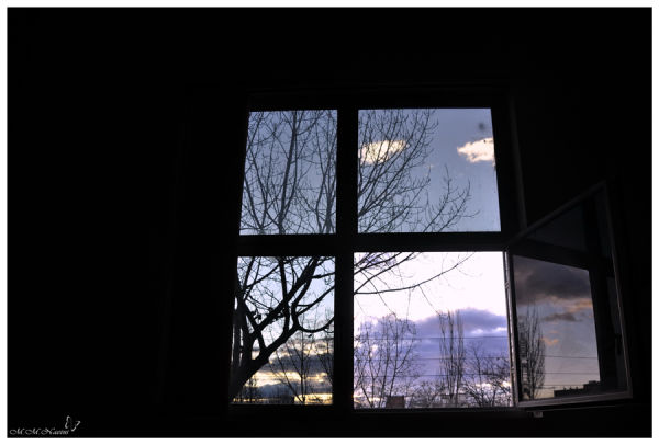 OPEN YOUR WINDOW AND LOOK AT THE SKY ... (2)