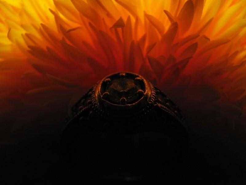 diamond ring on sunflower in shadow