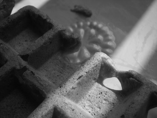 waffle in black & white