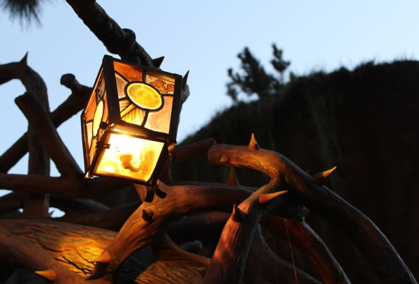 Disneyland light in Critter Country