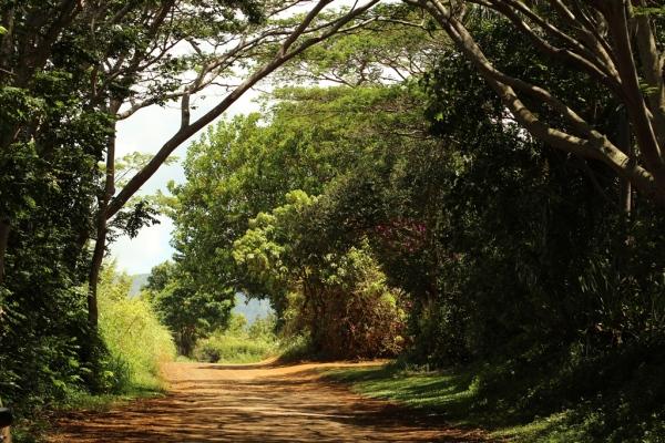 path to Secret Beach