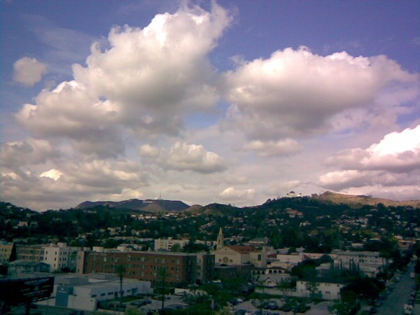 Hollywood Hills, viewed from Barnsdall Art Park.