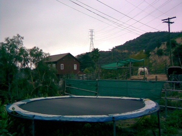 The House, the Horse, the Hills and a Trampoline.