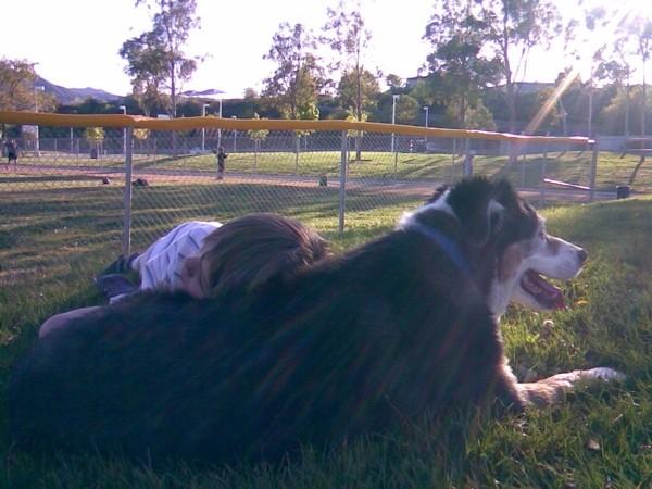 Daniel and Rocky enjoy an afternoon idyll.