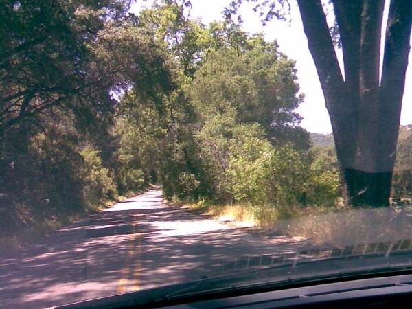 Country road near Paso Robles, California.
