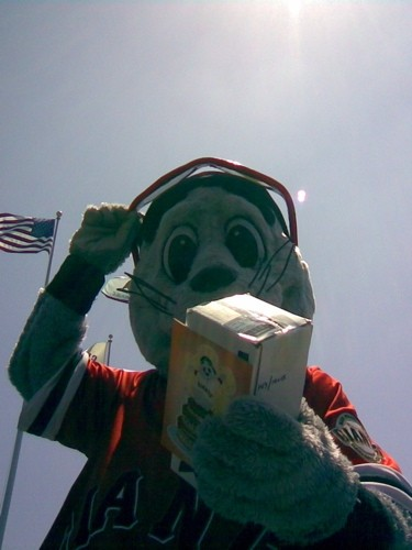 Lou Seal, mascot of the San Francisco Giants.