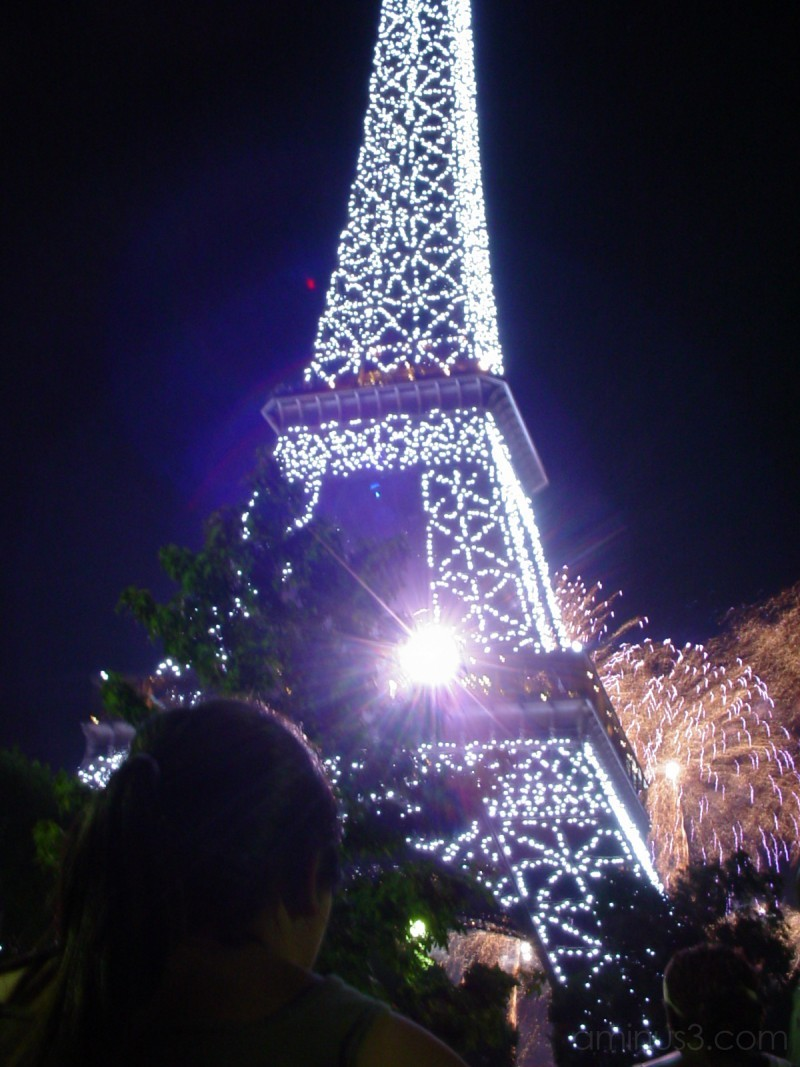 bastille day fireworks beneath the eiffel tower