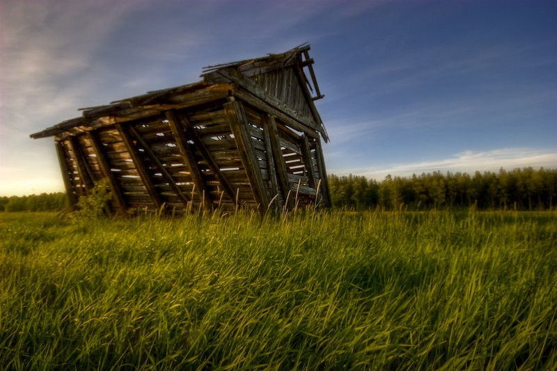 orton, grass, shed