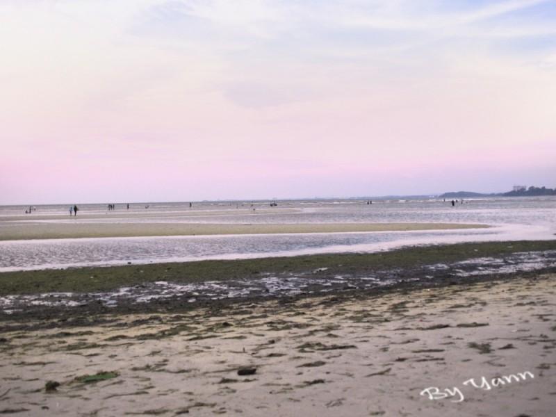 Shores Of P.D