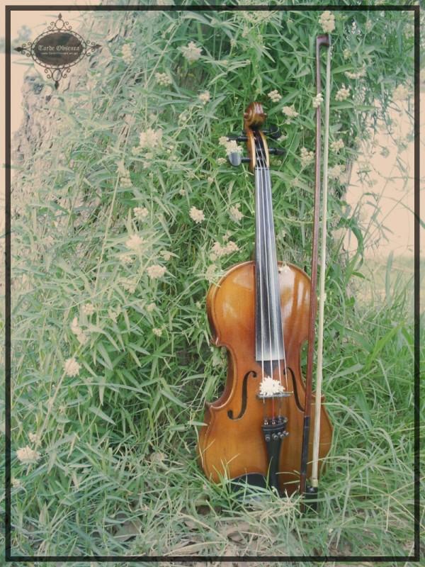 Violin by: TardeObscura