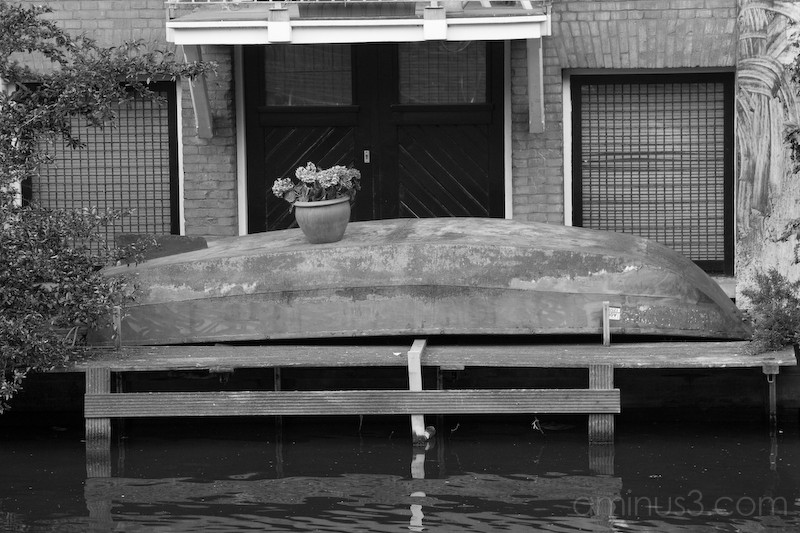 Flower pot on top of a rowing boat