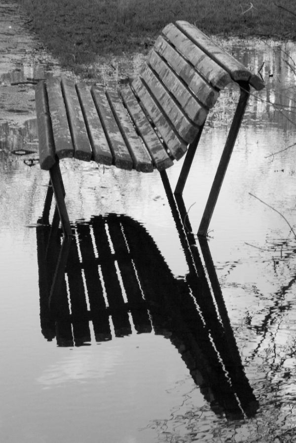 Bench reflection in an Amsterdam park