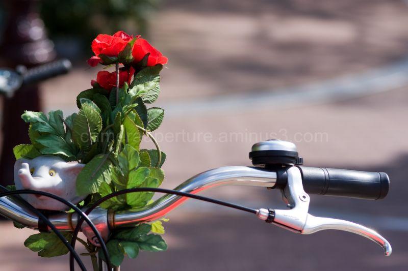 Flower bike accessory on the handle bars
