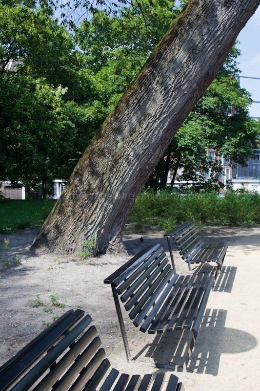 Tree angle