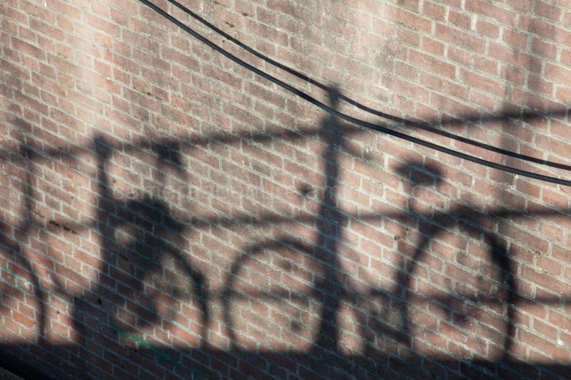 Shadows on the wal
