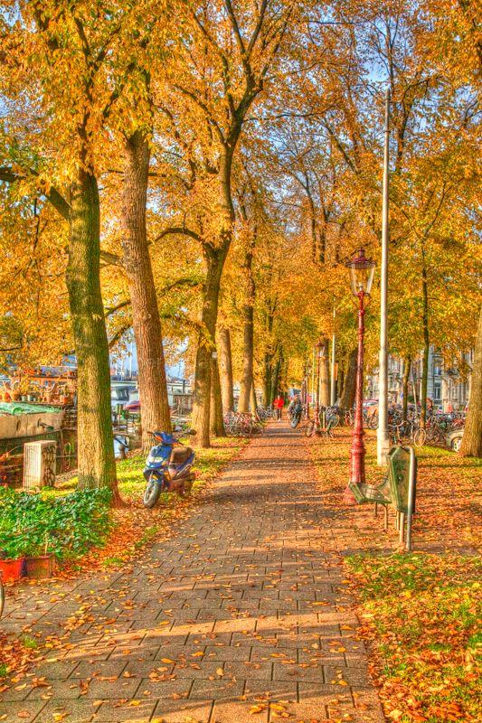 Path on a autumn day