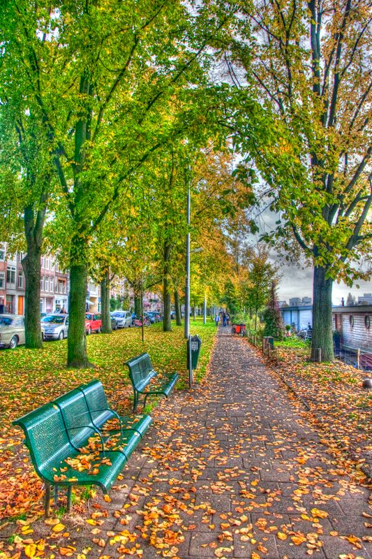 A pathway along the amstel river, Amsterdam