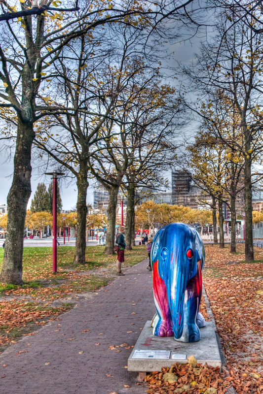 Elephant on a tree lined path in Amsterdam