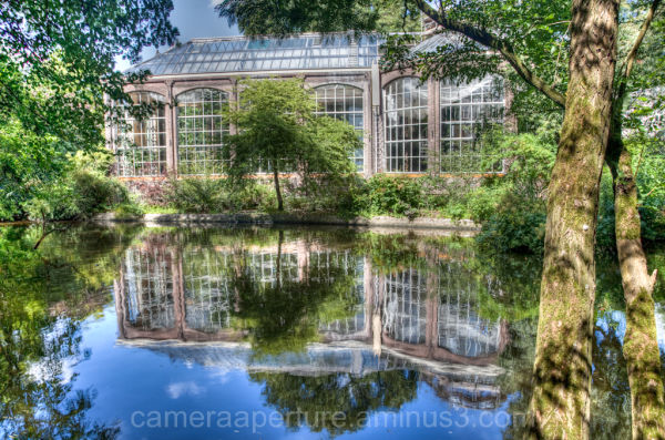 The reflection of the Botanic gardens in Amsterdam