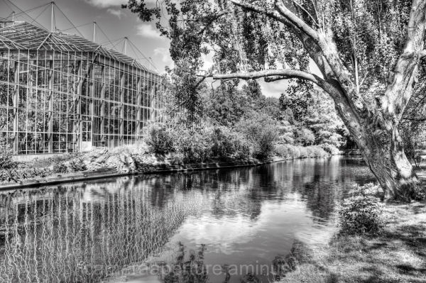 A reflection of the Botanic Gardens in Amsterdam