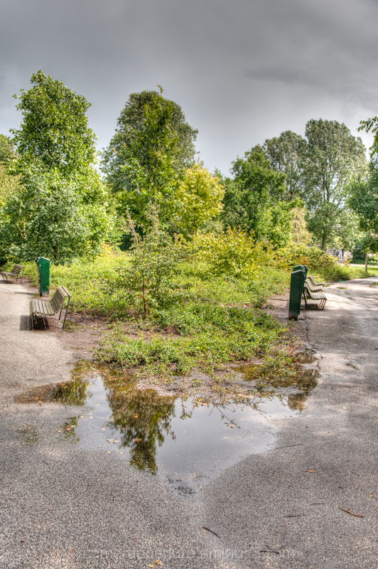 Oosterpark in Amsterdam after it been raining