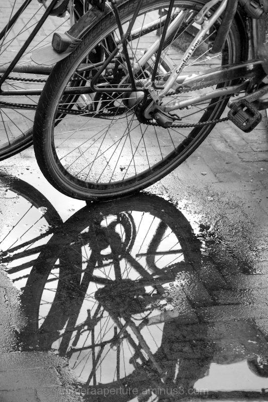 A reflection of a bike wheel reflected in rain wat