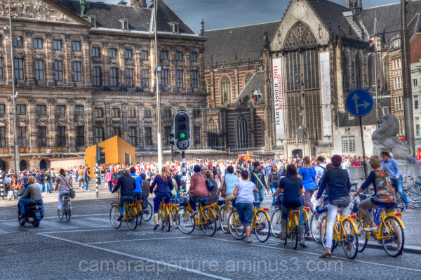 Yellow bikes in the city of Amsterdam