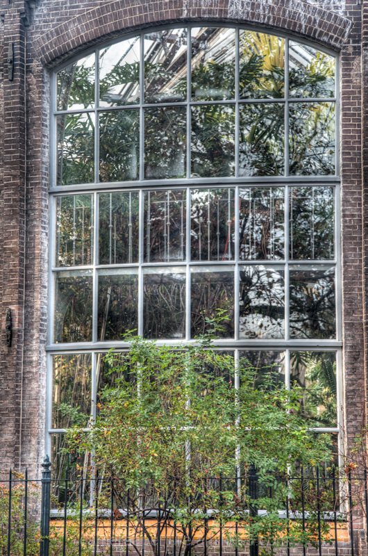 A reflection in the window of Amsterdam building