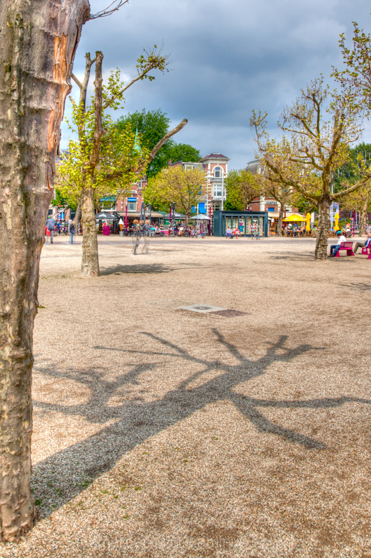 A shadow of a tree in museumplein in Amsterdam