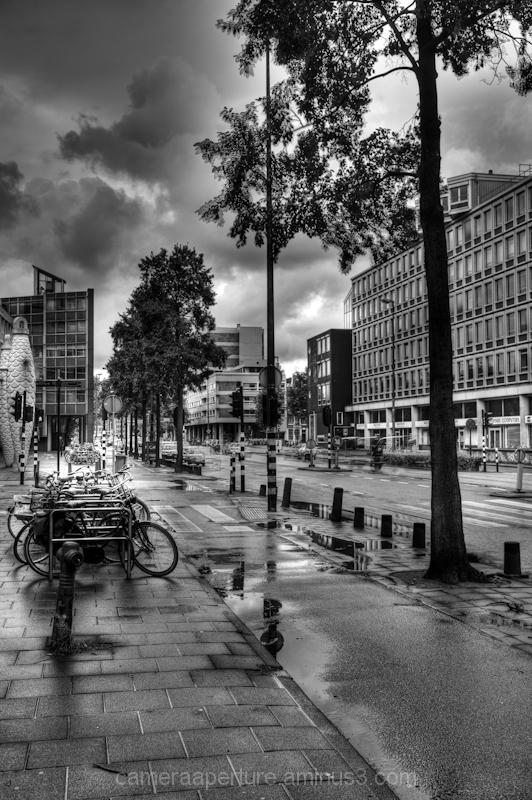 A wet cycle path in the city of Amsterdam