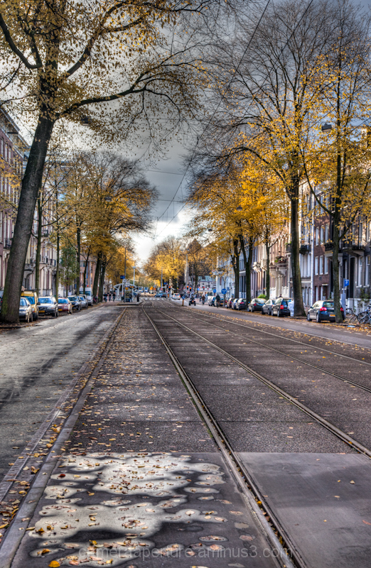 Tram lines in the early evening, Amsterdam